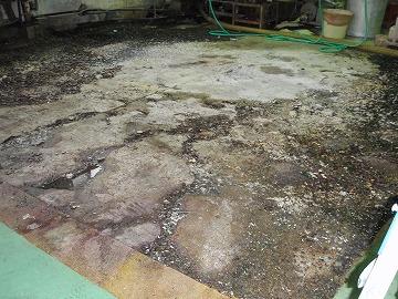 塗り床改修前
